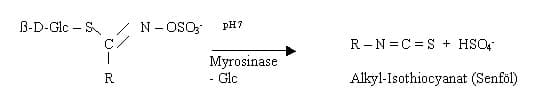 glucosinolate